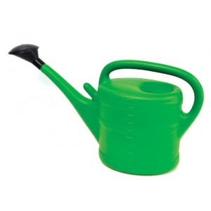 Watering Can c/w Rose